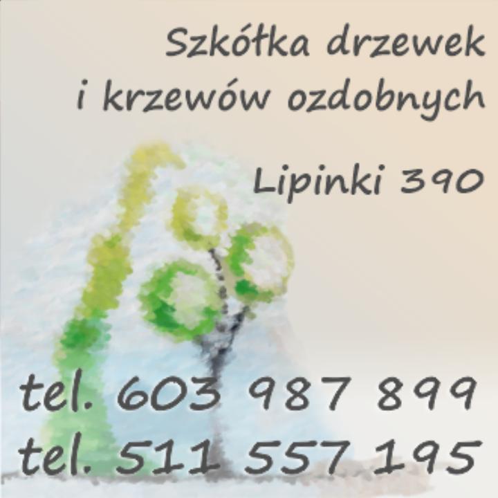 Szkółka drzewek i krzewów ozdobnych w Lipinkach • SERDECZNIE ZAPRASZAMY! • 603 987 899 • 511 557 195 •